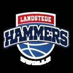 logo landstede hammers klant van bevede